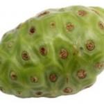 Noni – illasmakande frukt men välrenommerad folkmedicin