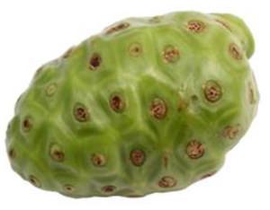Noni – illasmakande frukt men välrenommerad folkmedicin post image