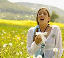 Så lindrar du symptomen på pollenallergi post image