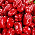 Kajennpeppar minskar aptiten och förbränner kalorier