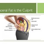 En diet med lagom mycket kolhydrater minskar bukfettet effektivt
