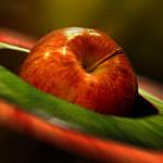 Äpplemarknaden i Kivik 2018