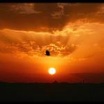Hur farlig är solen? Även när ozonlagret är tunt kan du fortfarande sola utan oro